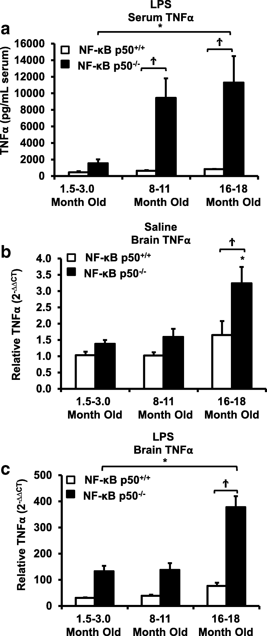 Loss of NF-κB p50 function synergistically augments