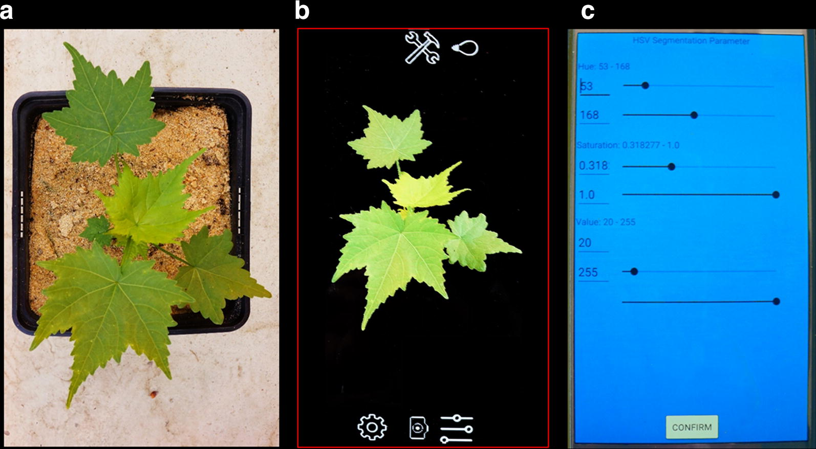 Plant Screen Mobile: an open-source mobile device app for