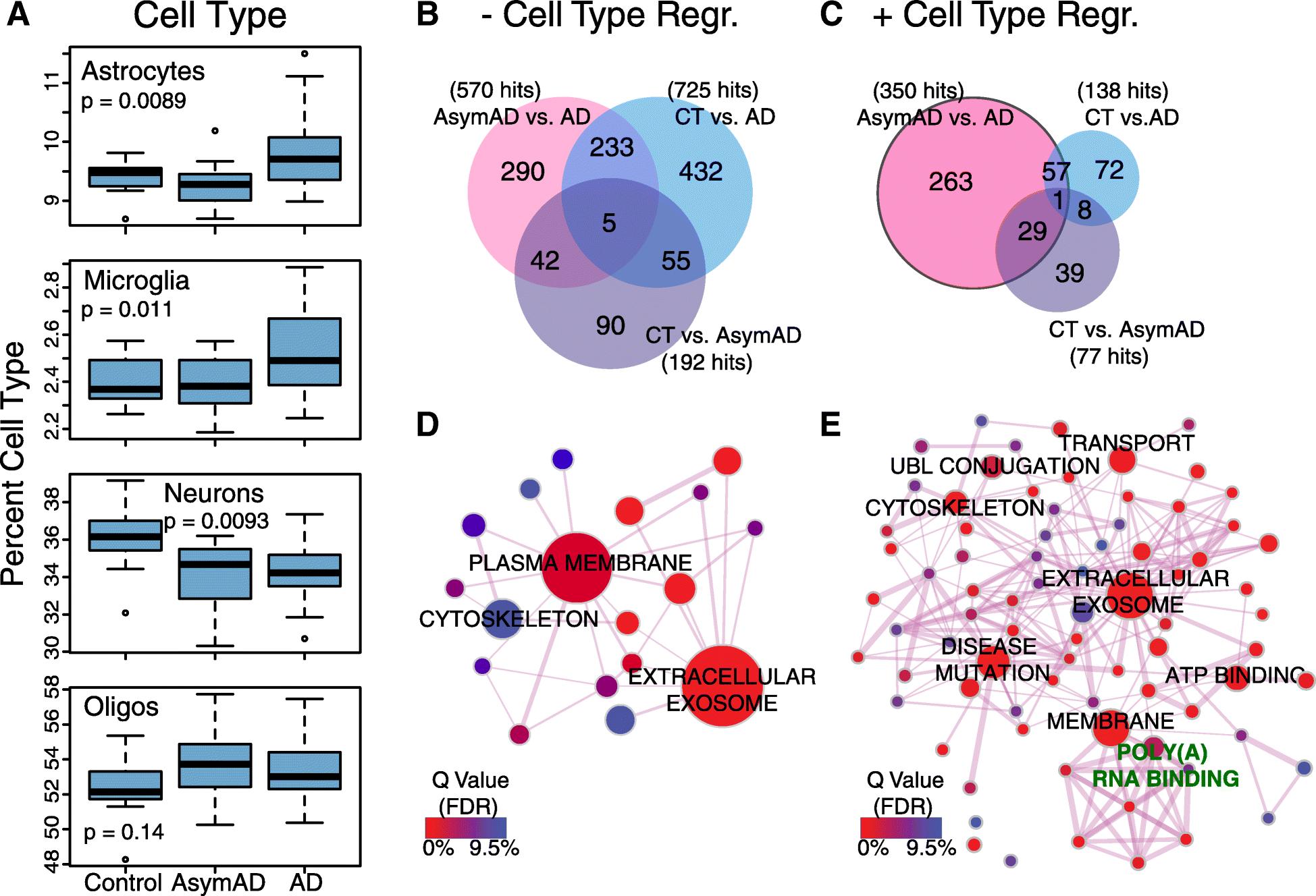 Deep proteomic network analysis of Alzheimer's disease brain