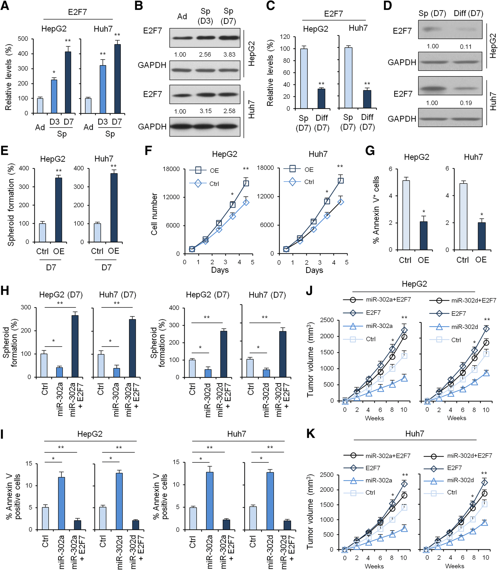 Microrna 302a D Inhibits The Self Renewal Capability And Cell Cycle Free Information Society Geiger Counter Electronic Circuit Schematic Open Image In New Window