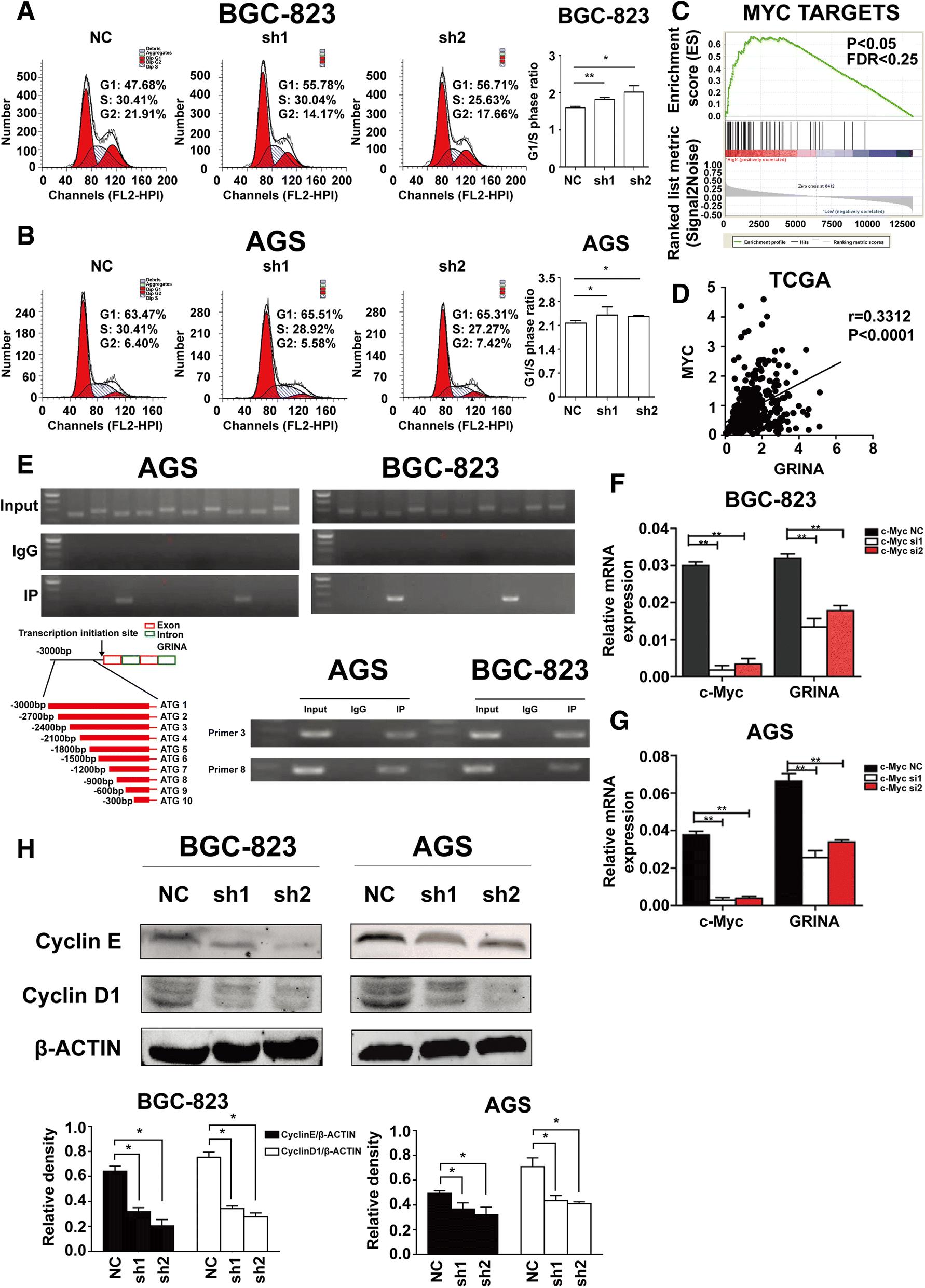 Transmembrane protein GRINA modulates aerobic glycolysis and