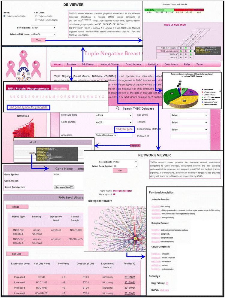 Negative Database