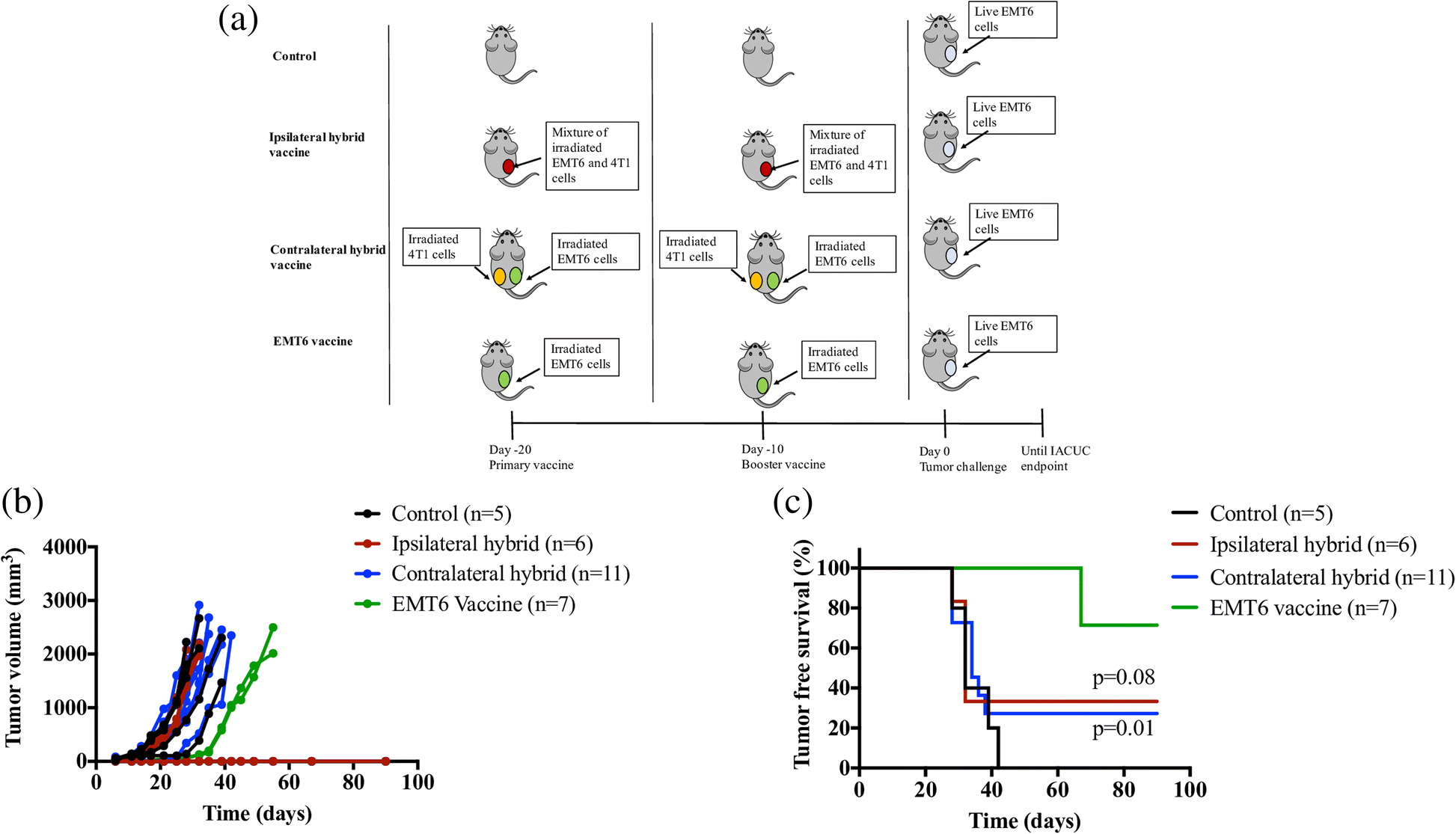 Tumor-derived granulocyte colony-stimulating factor