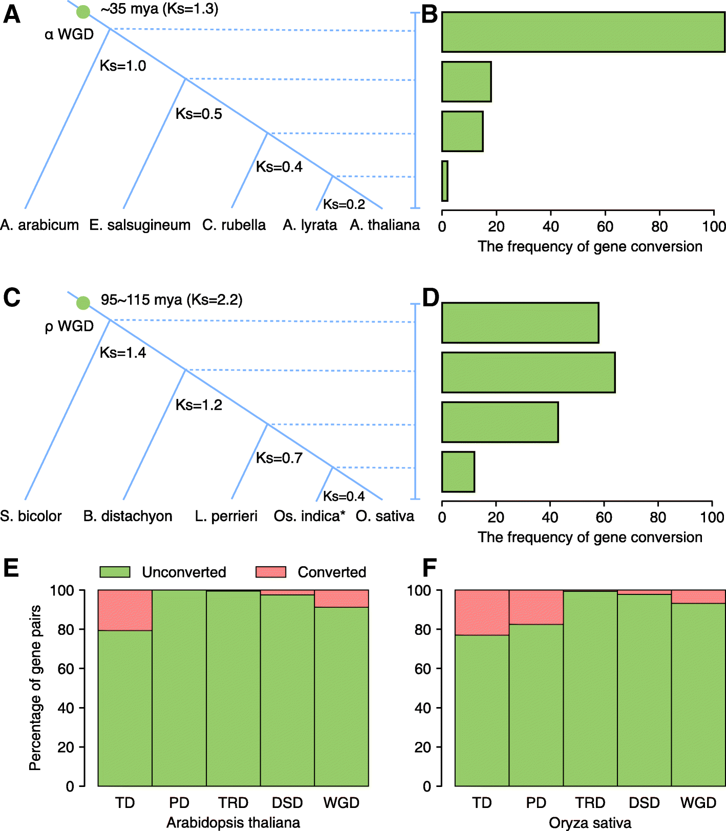 Gene duplication and evolution in recurring polyploidization