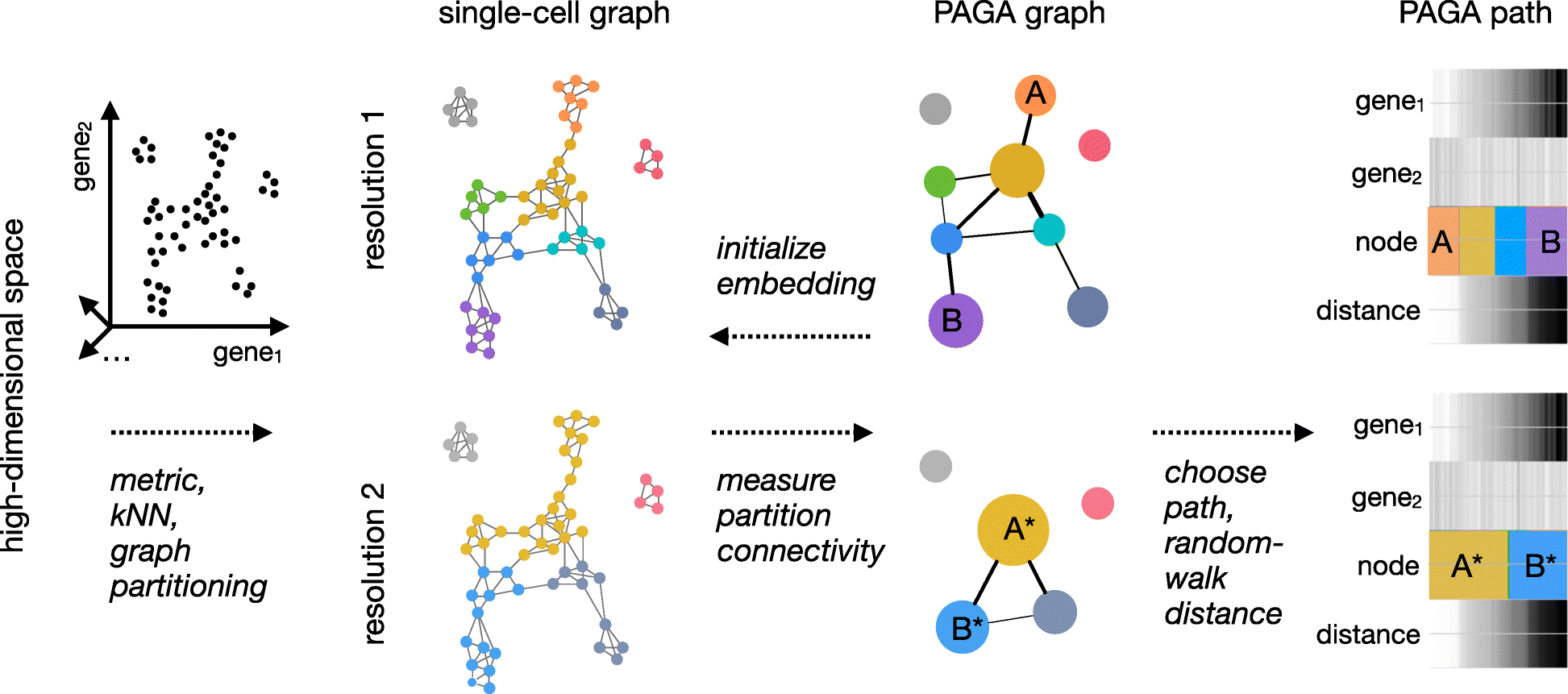 PAGA: graph abstraction reconciles clustering with trajectory