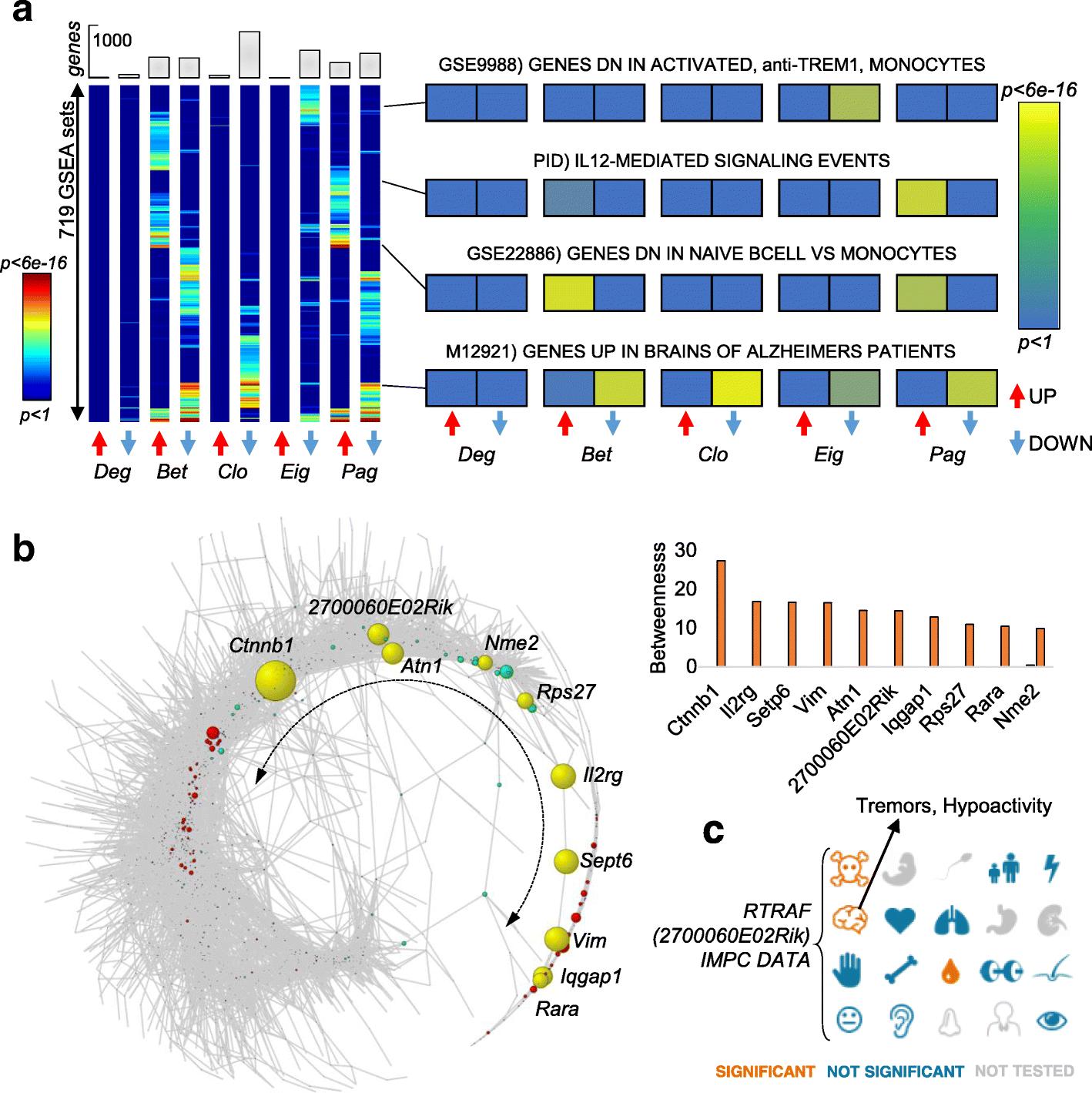 Single-cell transcriptomics unveils gene regulatory network