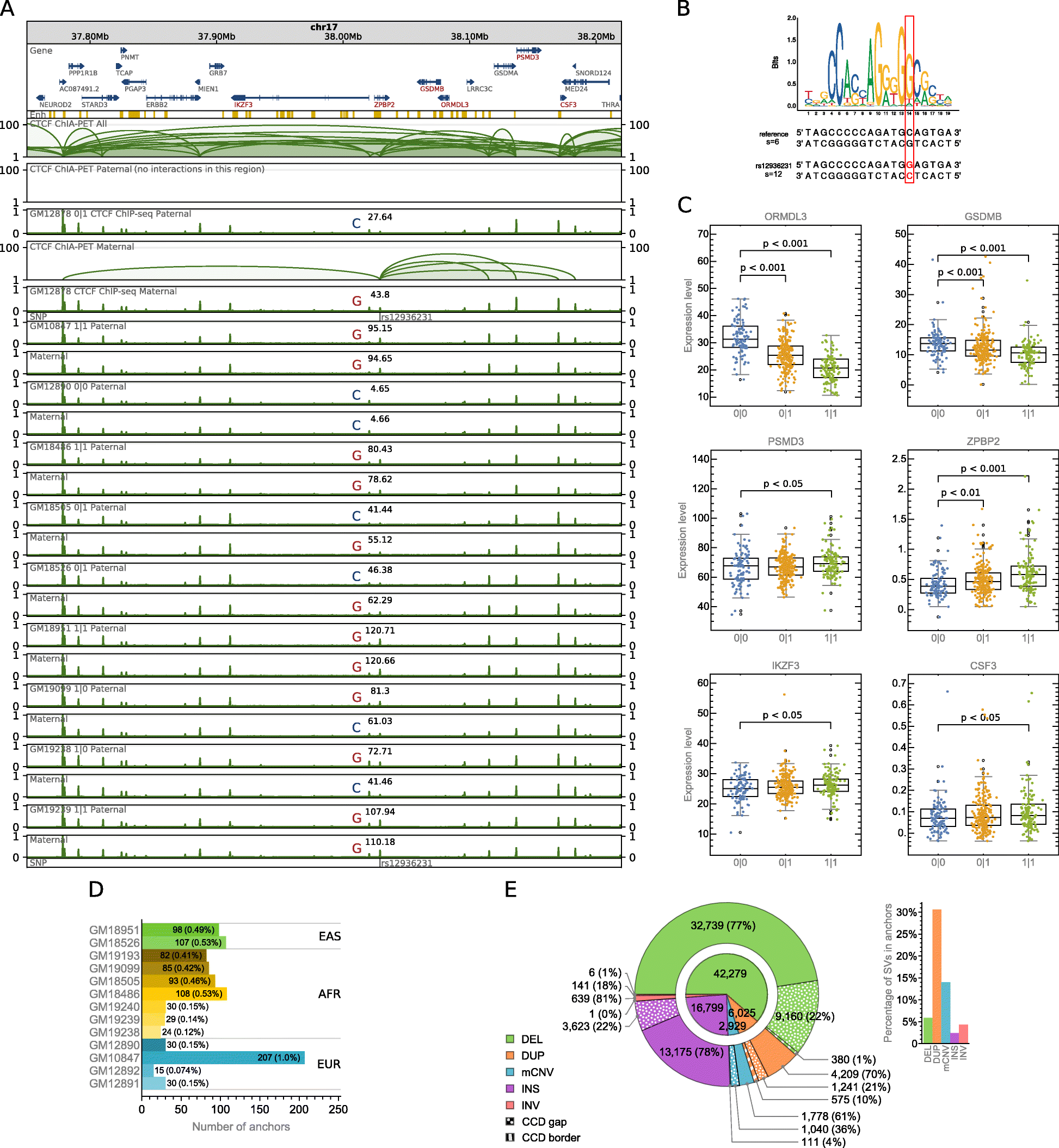 Spatial chromatin architecture alteration by structural