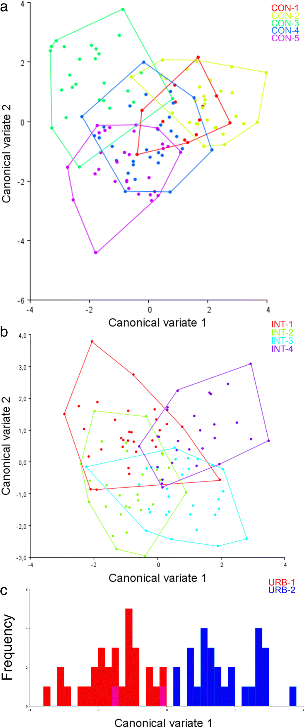 Wing morphometric variability in Aedes aegypti (Diptera: Culicidae