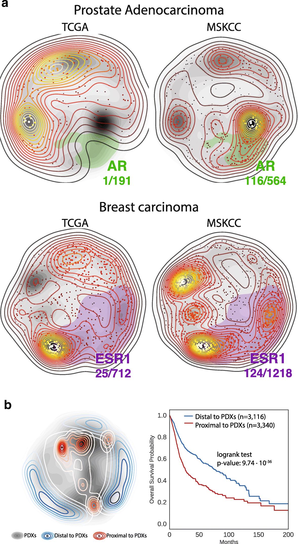 Exploring the OncoGenomic Landscape of cancer | SpringerLink