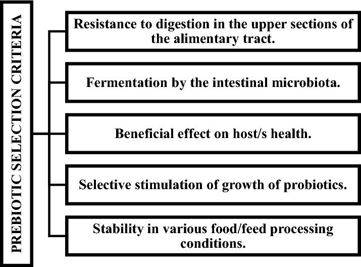 The role of probiotics, prebiotics and synbiotics in animal