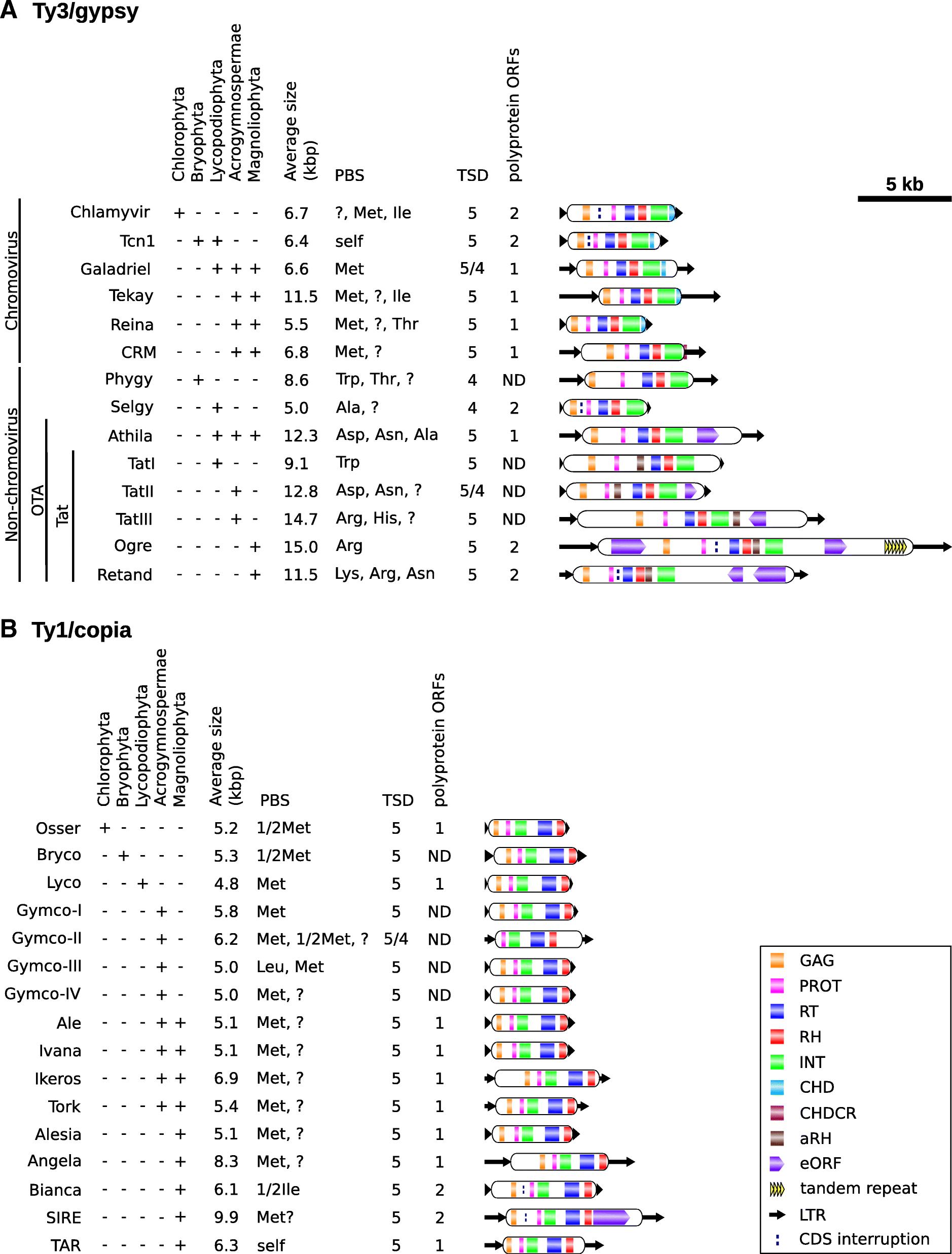 Systematic survey of plant LTR-retrotransposons elucidates