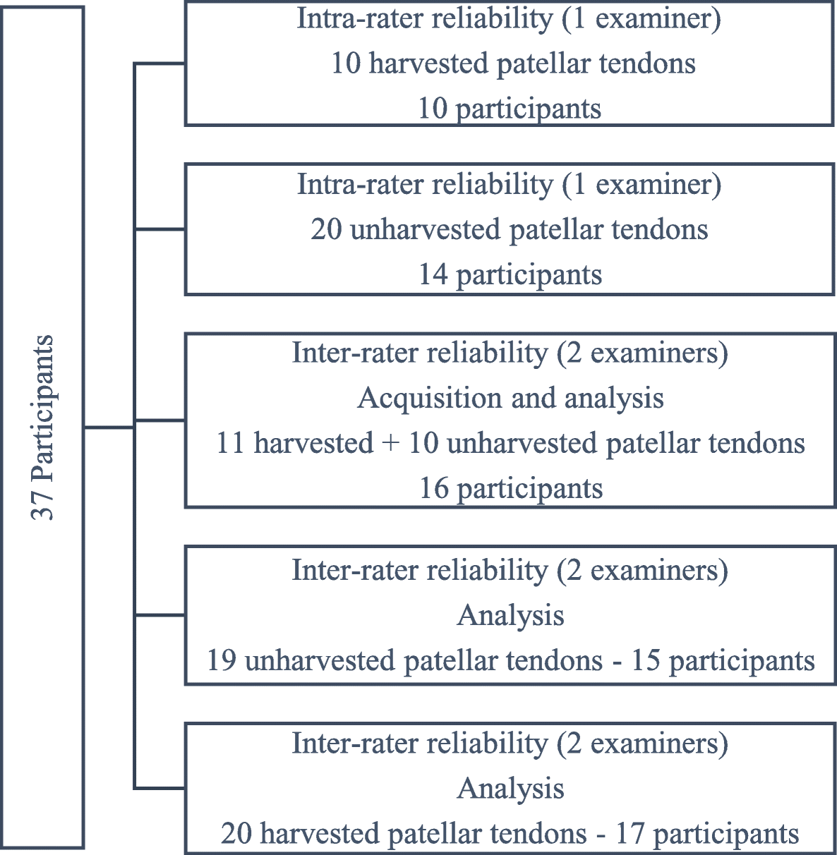 Reliability and methodology of quantitative assessment of