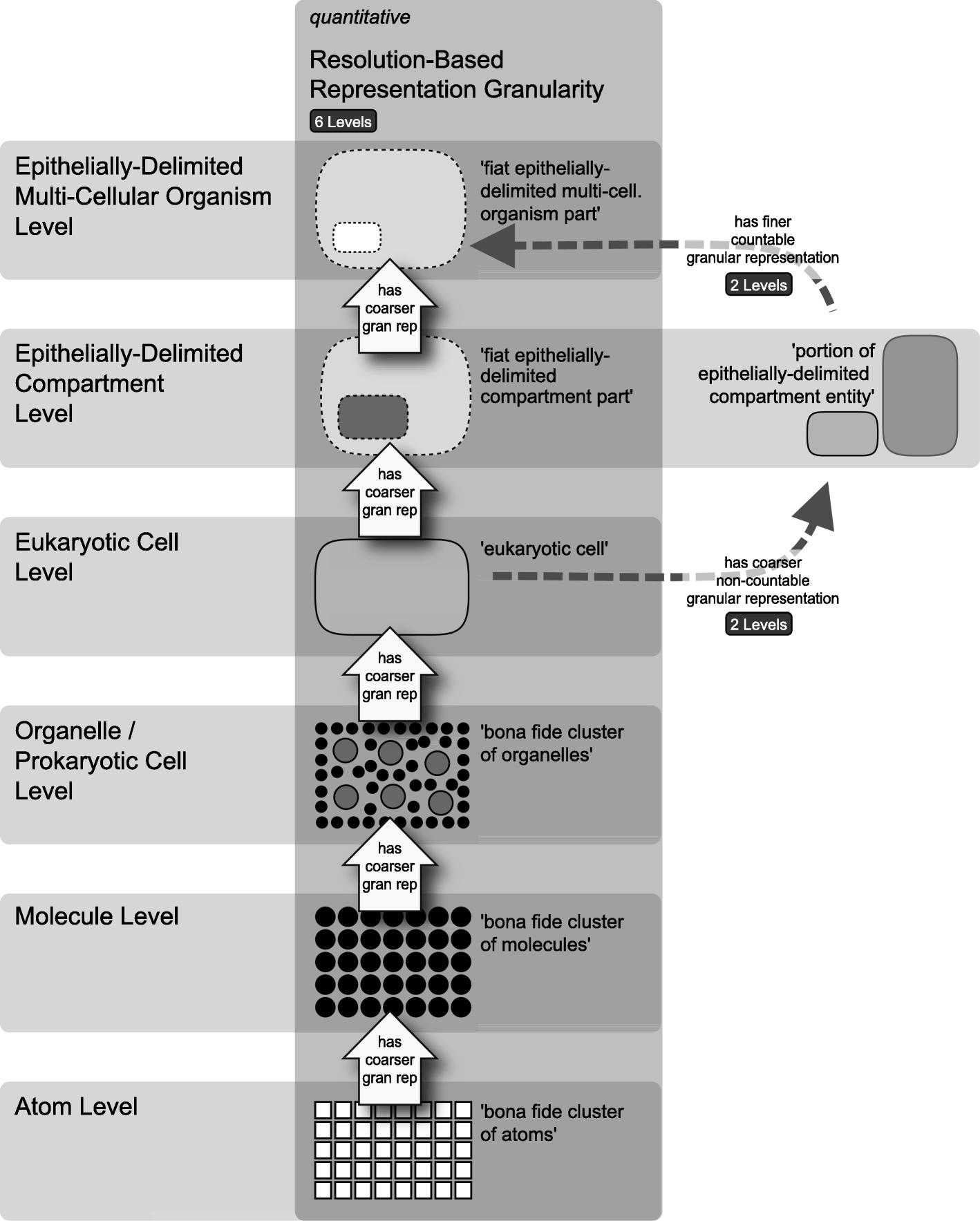 Levels and building blocks—toward a domain granularity