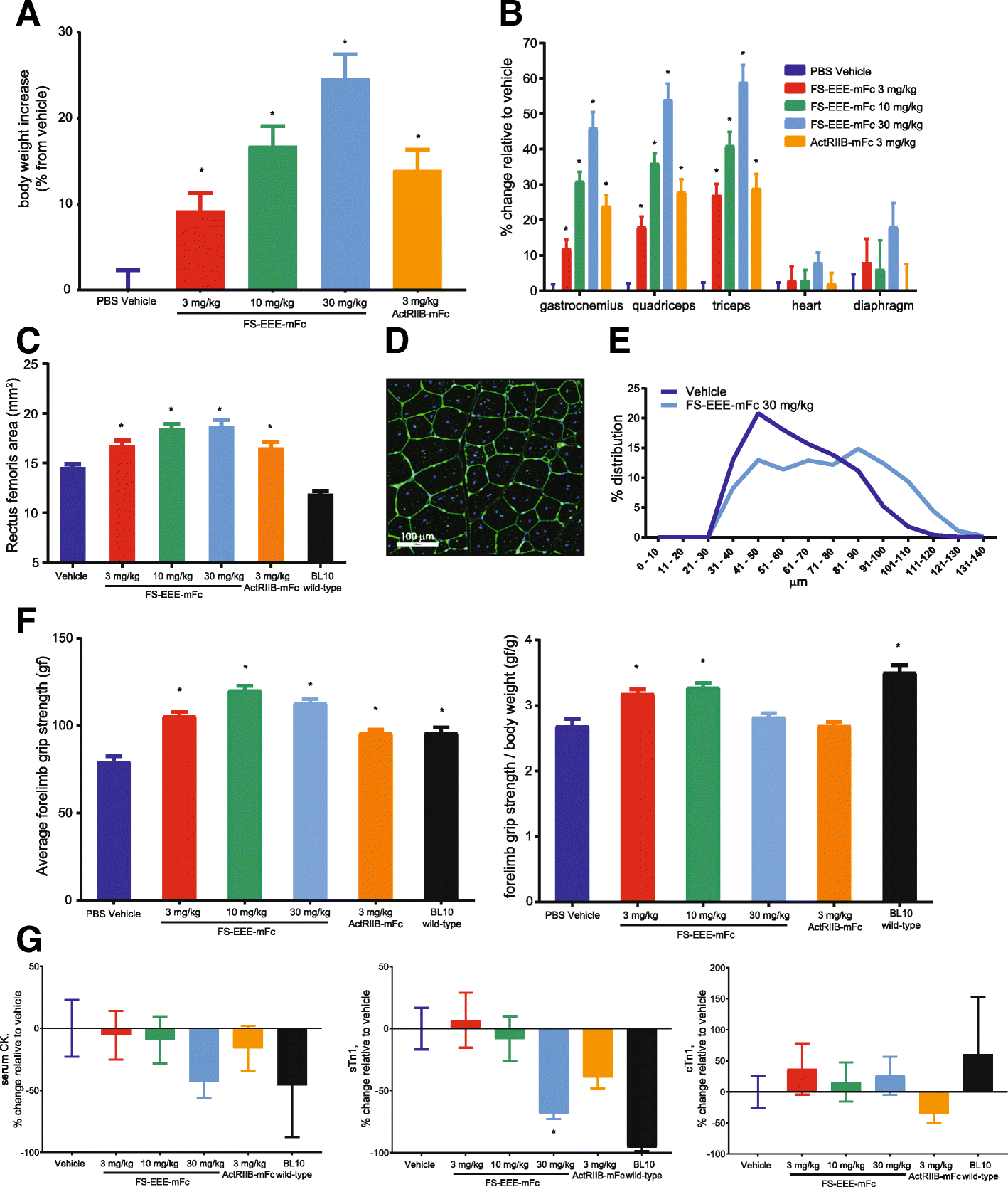 Myostatin and activin blockade by engineered follistatin results in