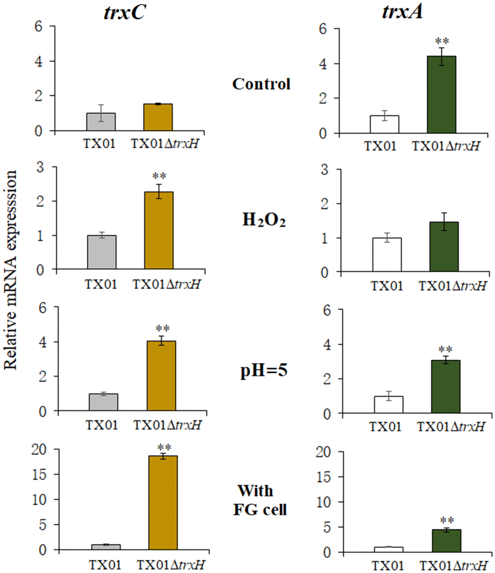 Thioredoxin H (TrxH) contributes to adversity adaptation and