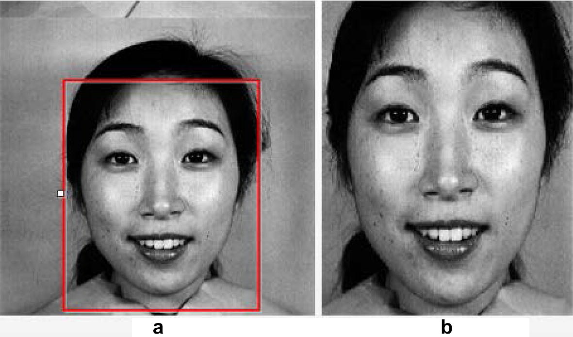 Facial expression recognition using optimized active regions