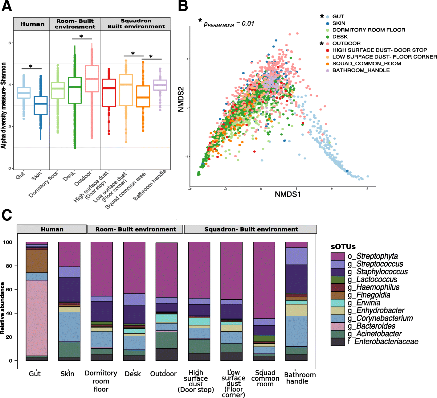 Longitudinal homogenization of the microbiome between both occupants