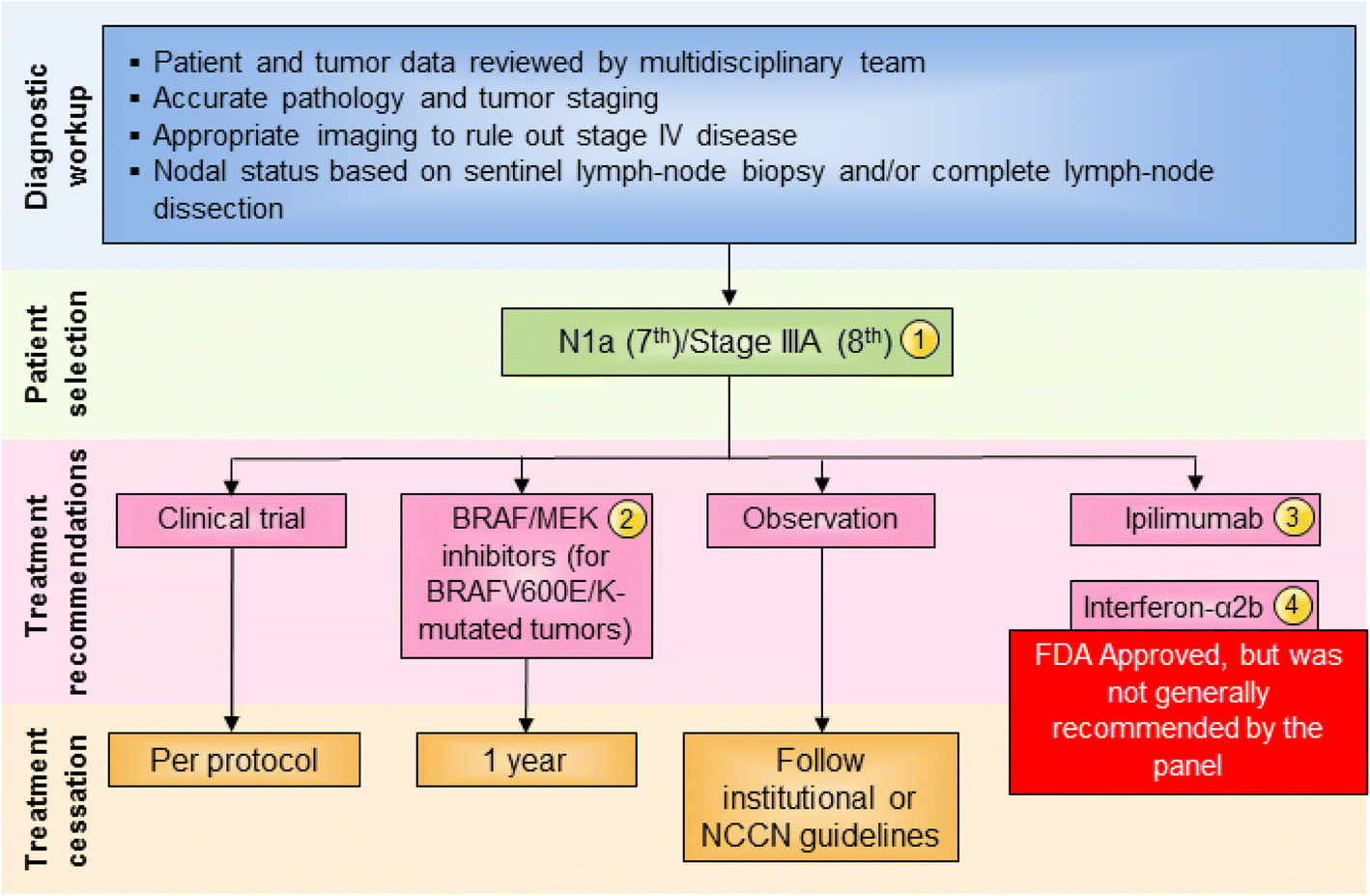 An update on the Society for Immunotherapy of Cancer