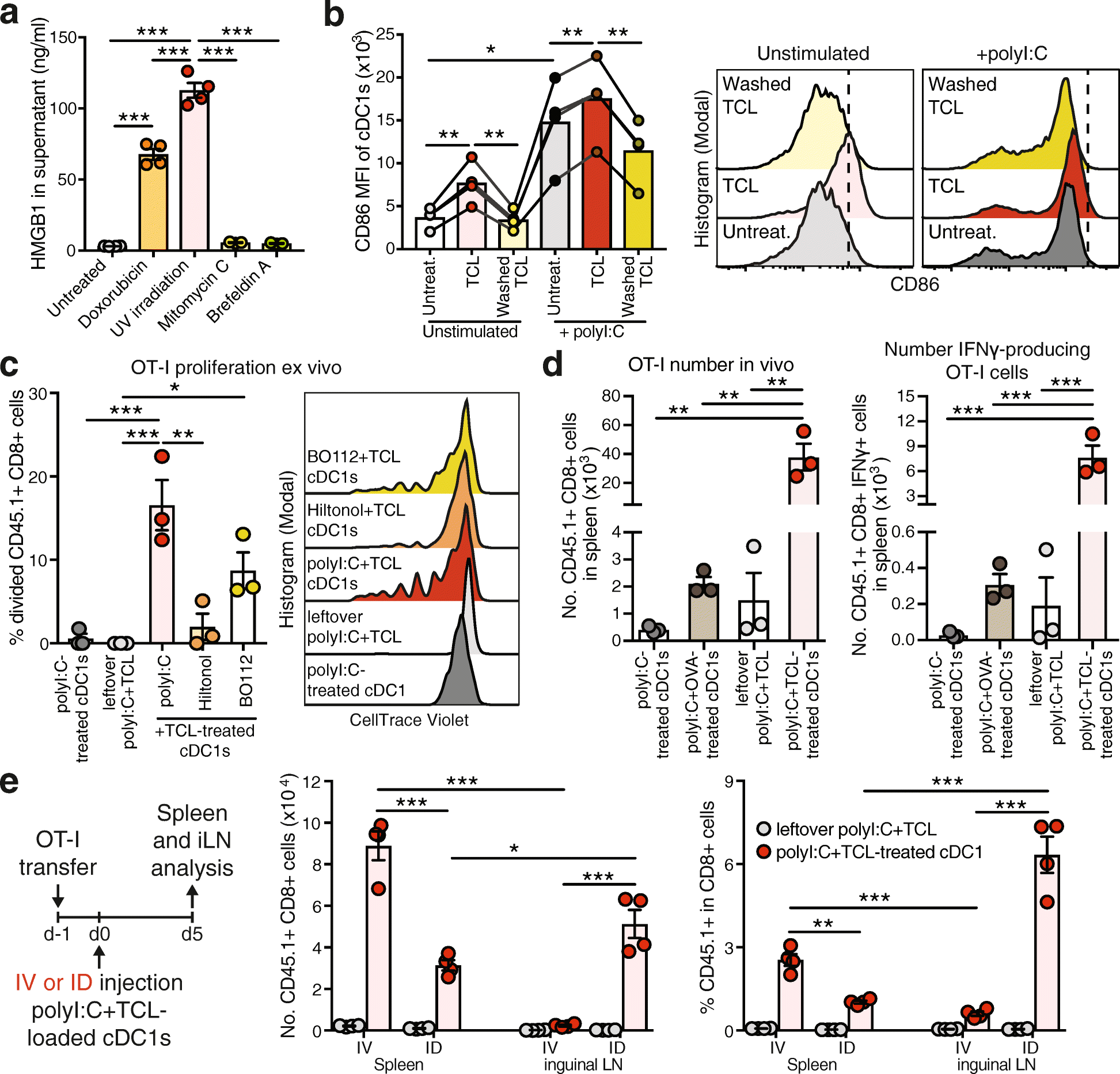 Effective cancer immunotherapy by natural mouse conventional type-1