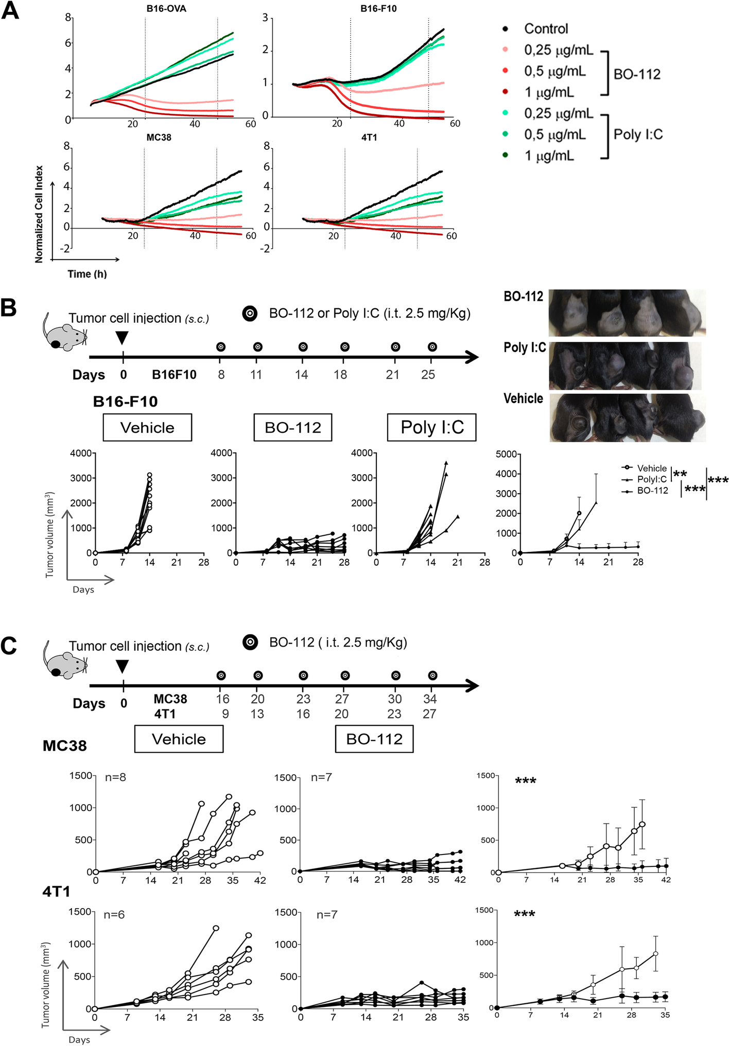 Immunotherapeutic effects of intratumoral nanoplexed poly I:C