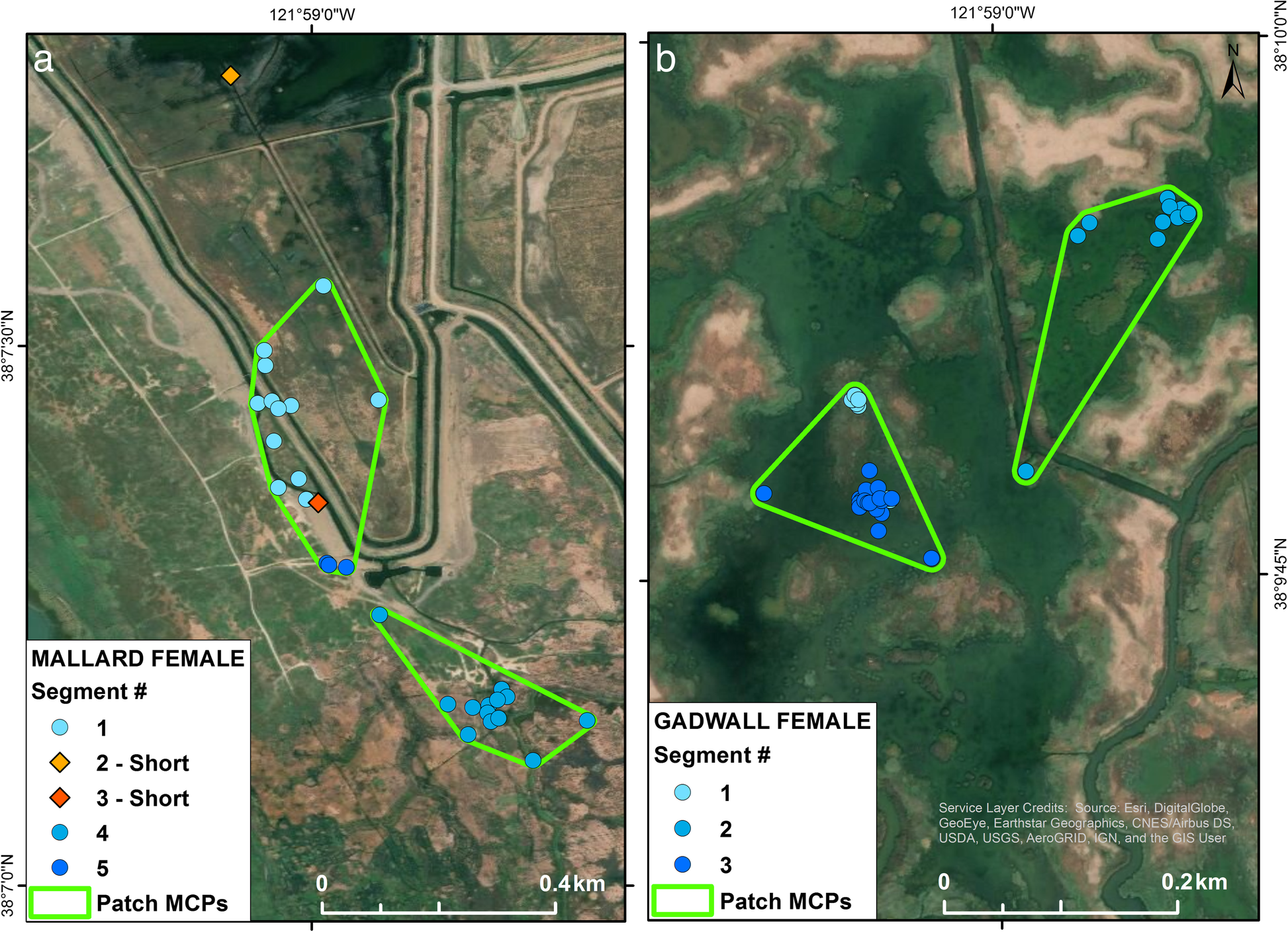790485f6e76 GPS tracking data reveals daily spatio-temporal movement patterns of ...