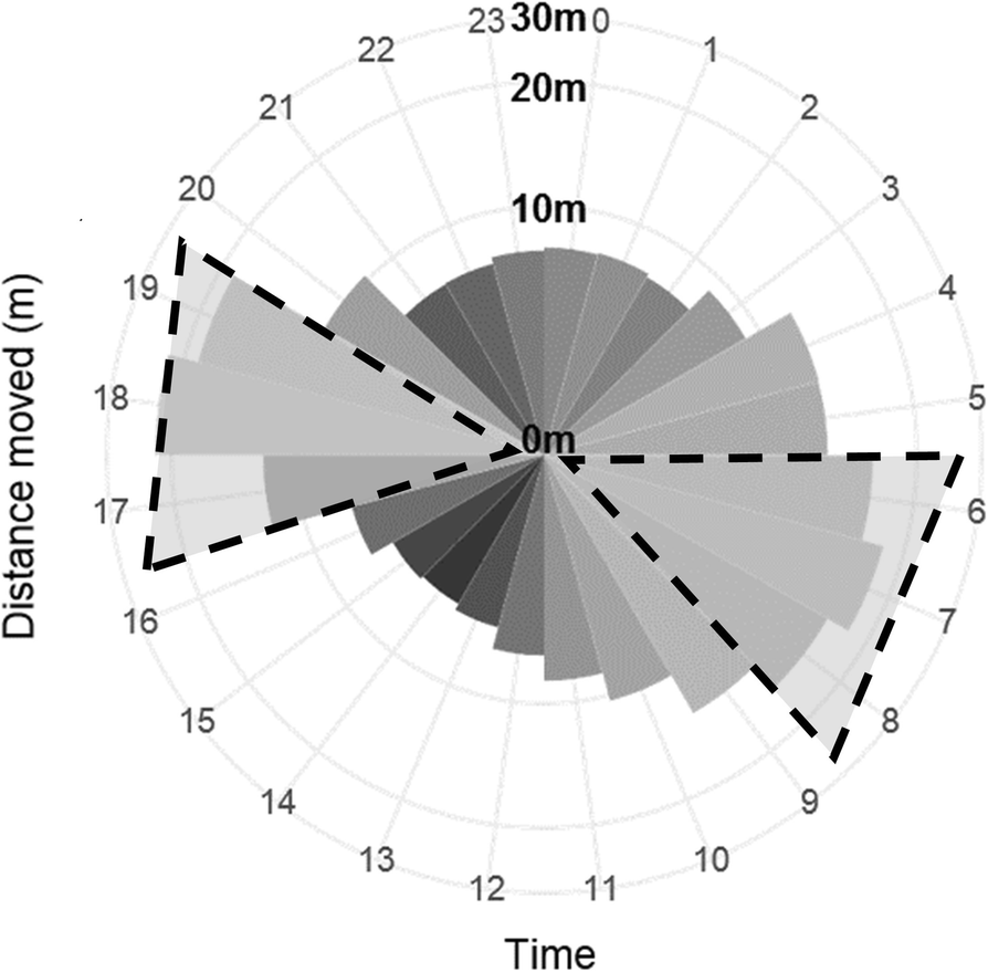 GPS tracking data reveals daily spatio-temporal movement patterns of