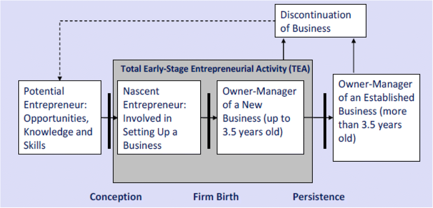 Government policies and entrepreneurship phases in emerging