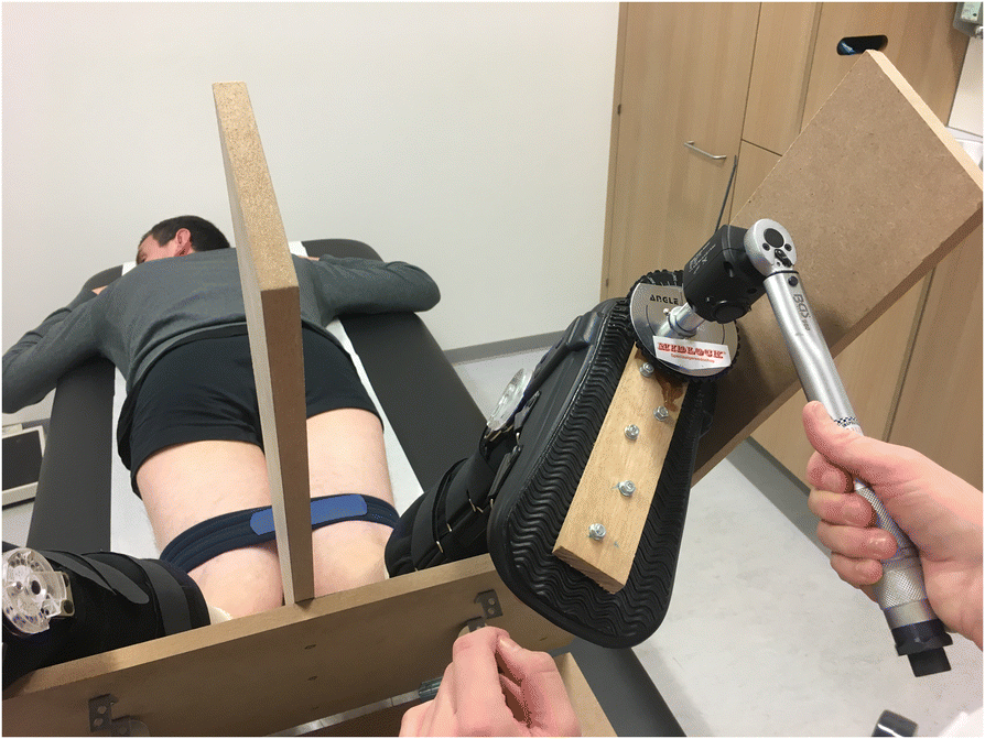 A novel test for assessment of anterolateral rotatory