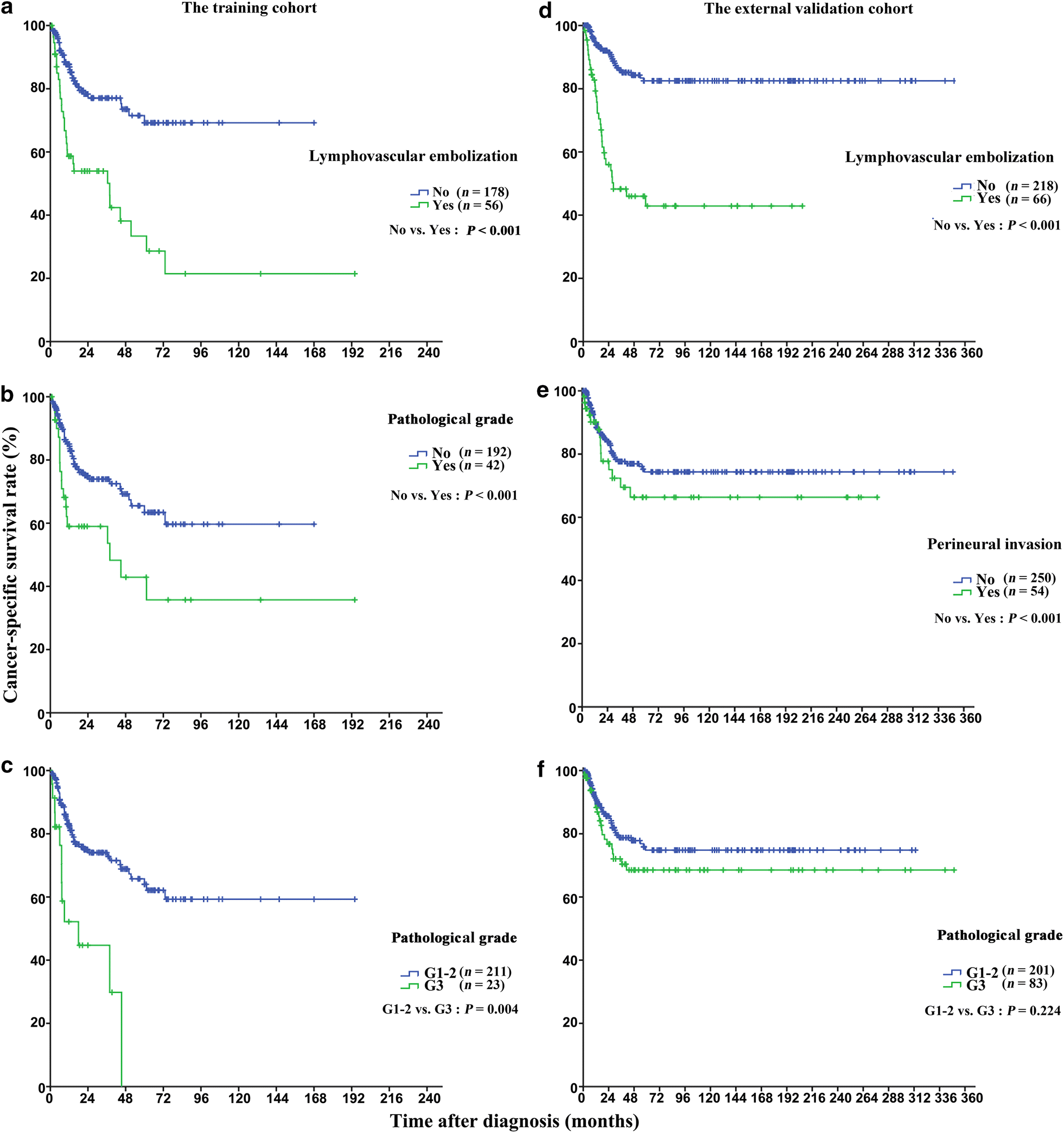 a modified clinicopathological tumor staging system for survival