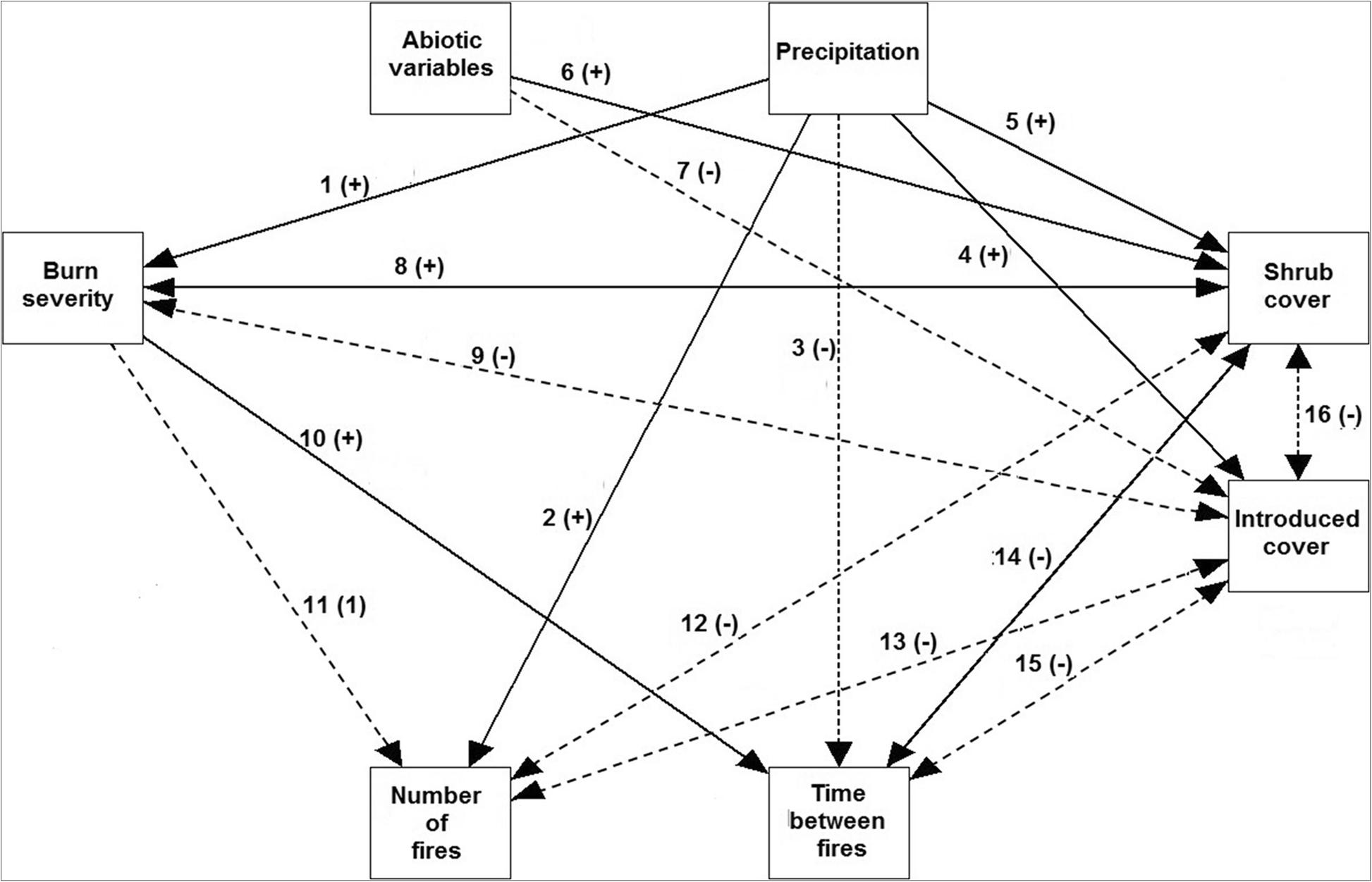 Got shrubs? Precipitation mediates long-term shrub and