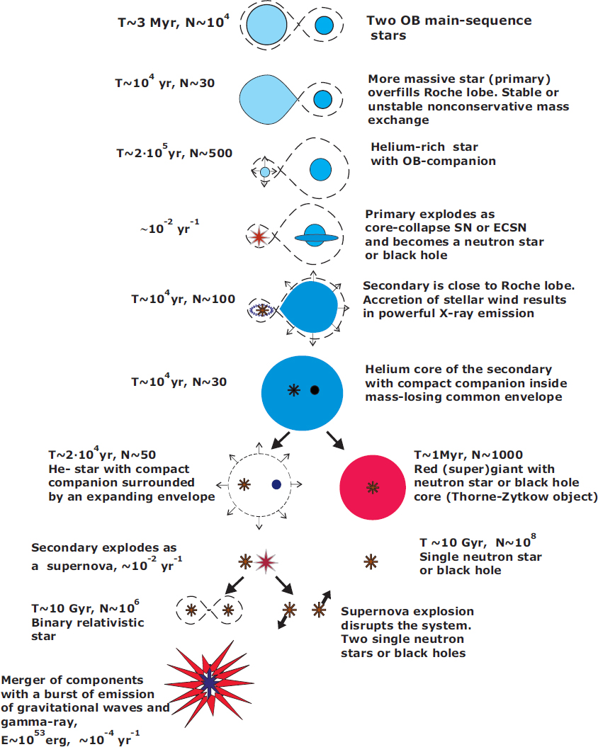 The Evolution of Compact Binary Star Systems | SpringerLink