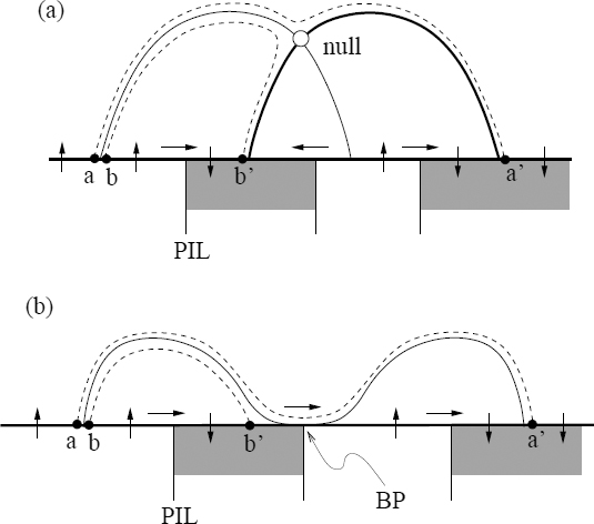 Topological Methods for the Analysis of Solar Magnetic