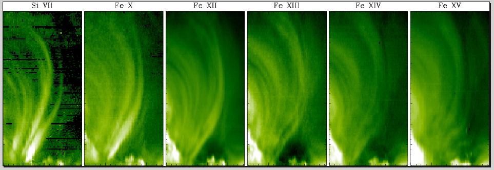 Coronal Loops: Observations and Modeling of Confined Plasma
