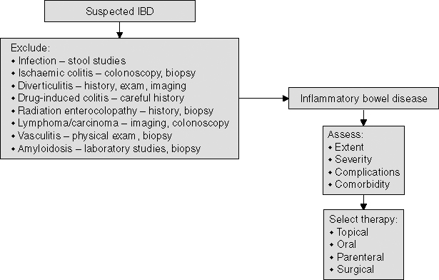 Treatment of Inflammatory Bowel Disease in the Elderly