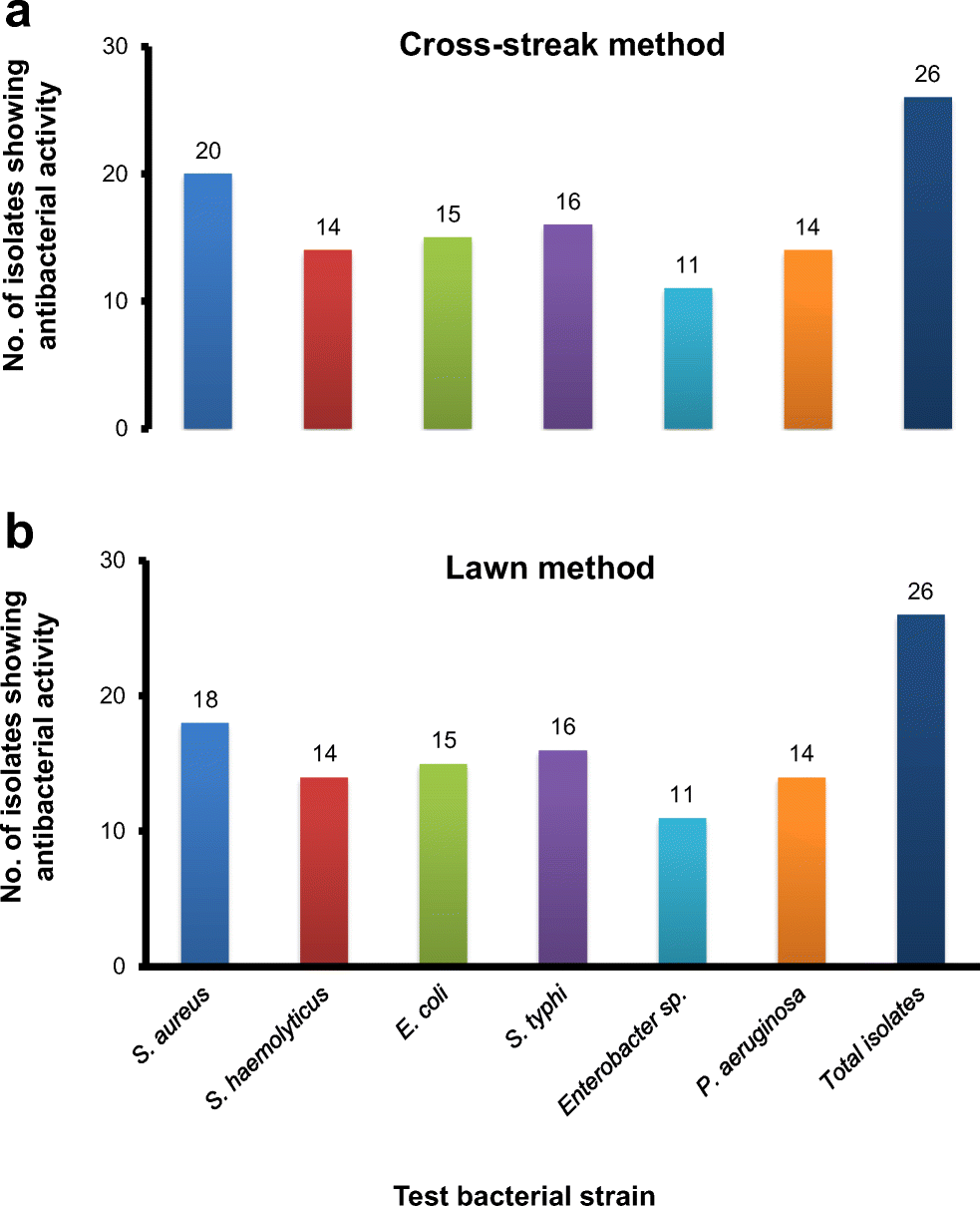 Bioprospecting actinobacterial diversity antagonistic to multidrug