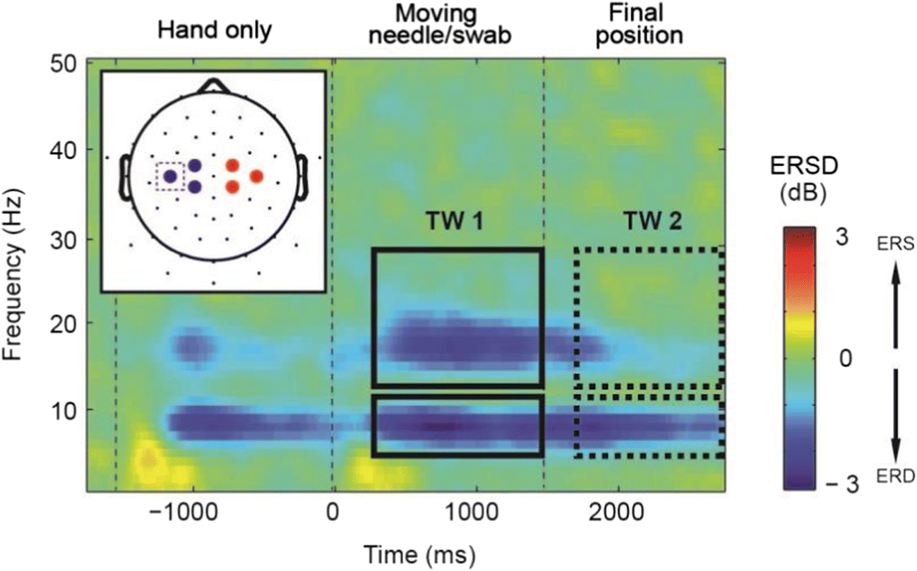 Increasing self-other bodily overlap increases sensorimotor