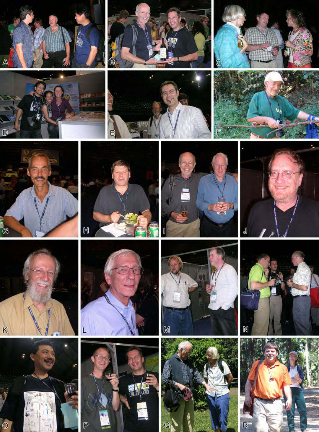 The International Mycological Association: its history in
