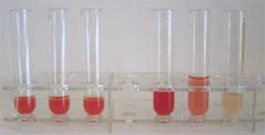 Drei Gläser Probe