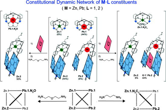 Constitutional Dynamic Chemistry: Bridge from Supramolecular
