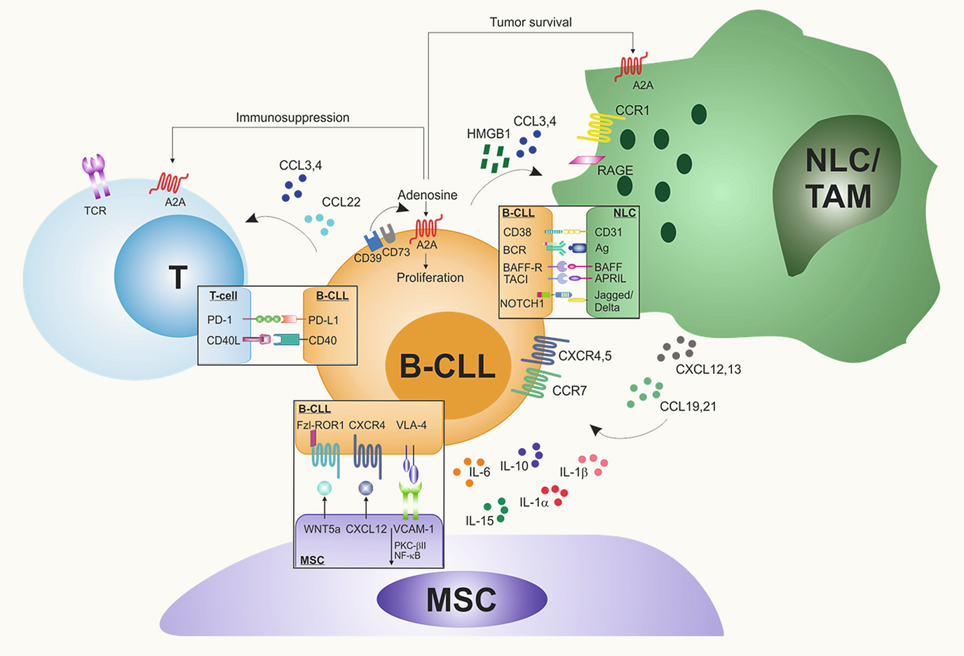 Mechanisms of Resistance to Targeted Therapies in Chronic