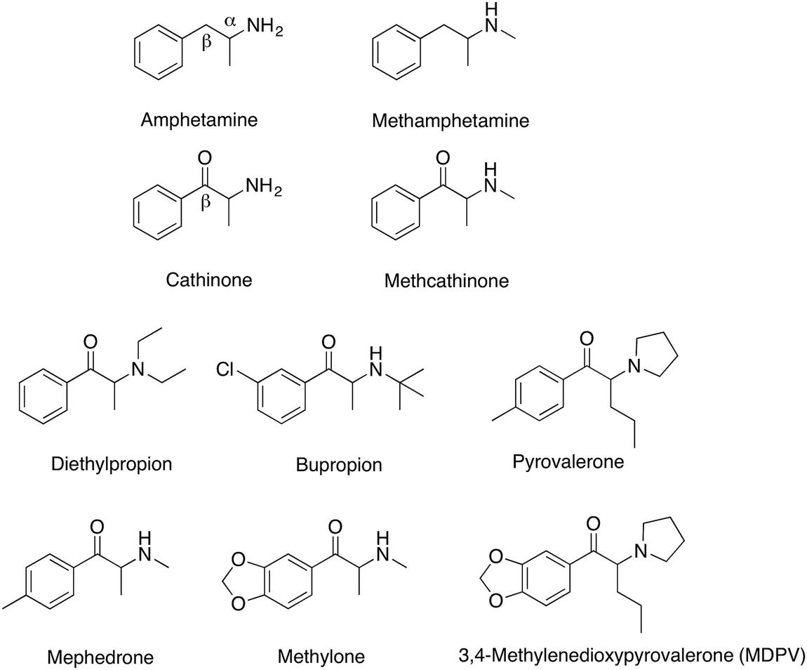 Rose Glen North Dakota ⁓ Try These Mephedrone Synthesis Pdf