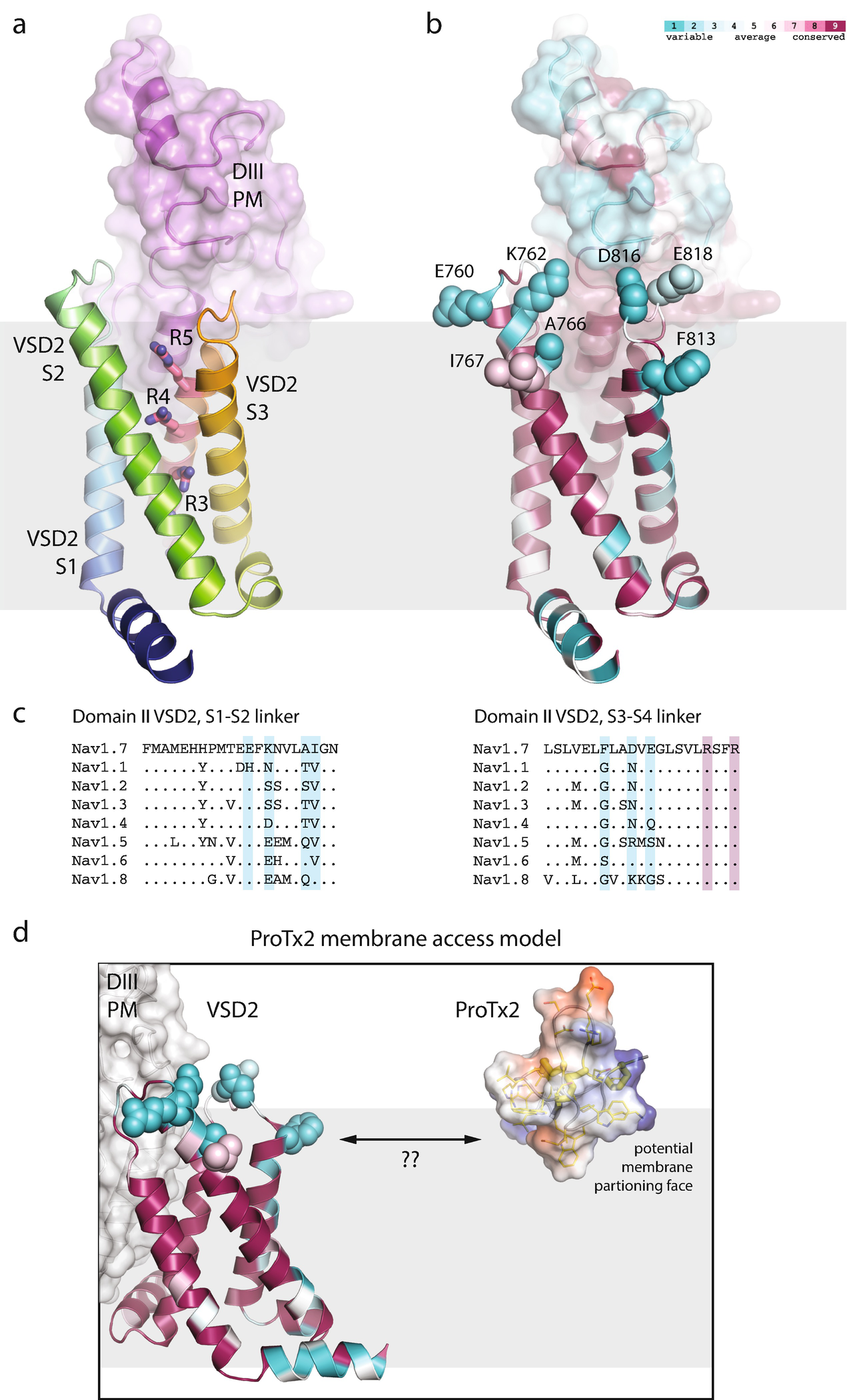Selective Ligands And Drug Discovery Targeting The Voltage Gated 10 Digit 0816 Open Image In New Window