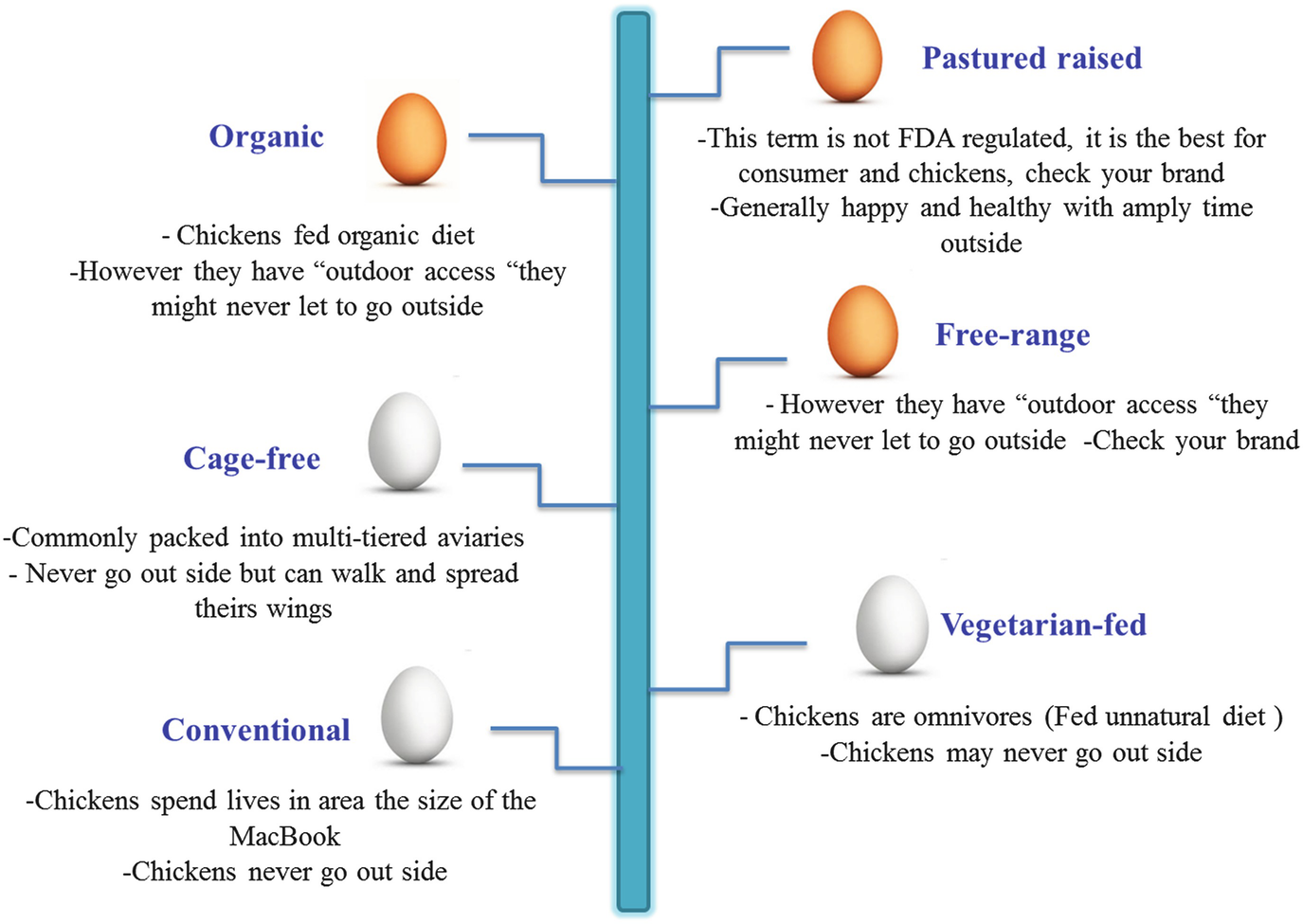 Nutritional Strategies to Produce Organic and Healthy Poultry