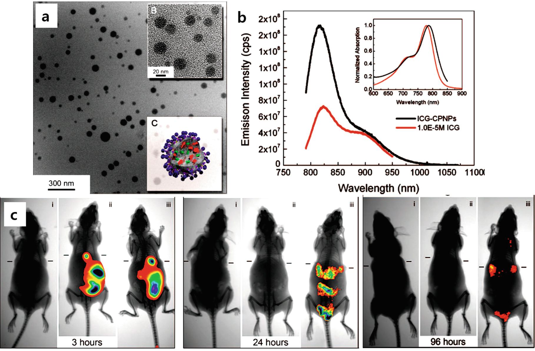 Inorganic Fluorescent Nanomaterials | SpringerLink