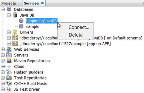 JDBC API   SpringerLink