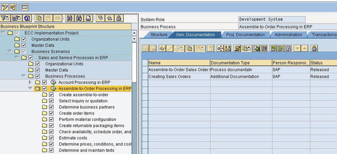 Implementing SAP using Tools, Methods, and Accelerators