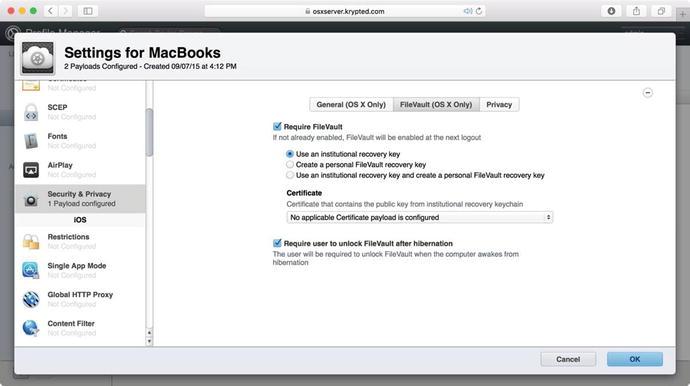 Encrypting Files and Volumes | SpringerLink