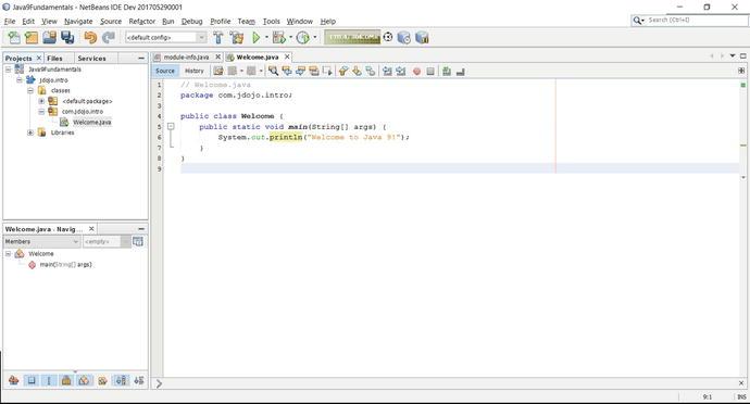 Writing Java Programs | SpringerLink