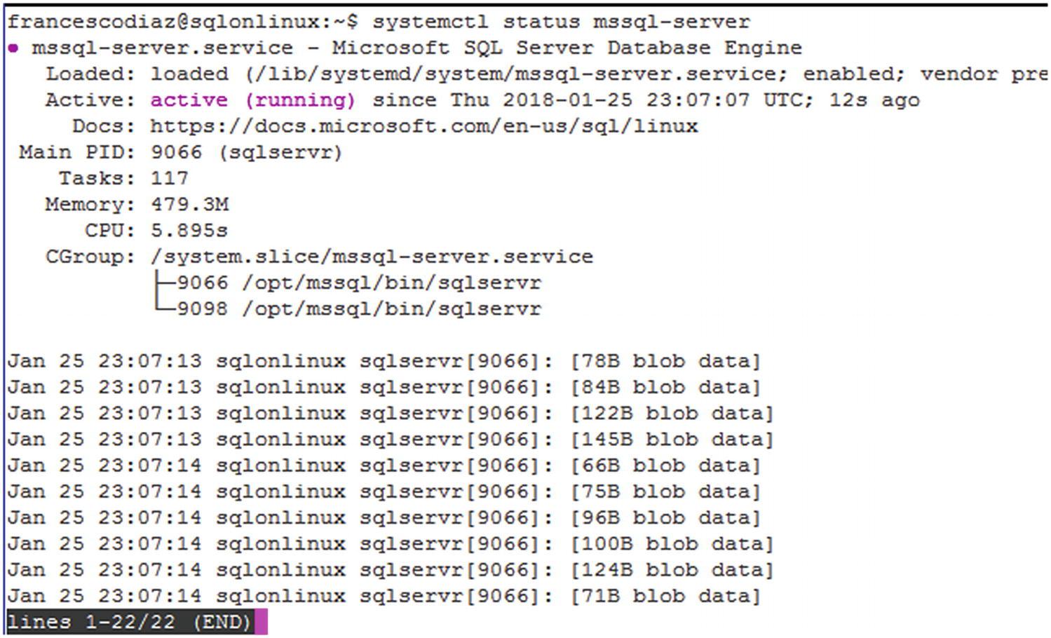 Working with SQL Server on Hybrid Cloud and Azure IaaS | SpringerLink