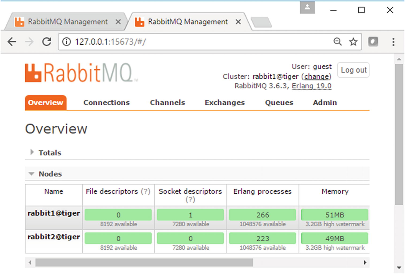 Install, Configure, and Run RabbitMQ Cluster | SpringerLink